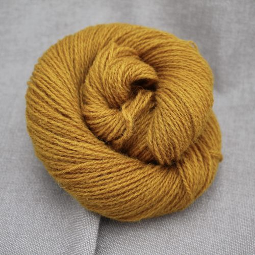 A skein of Severn 4 Ply in a warm mustard colour
