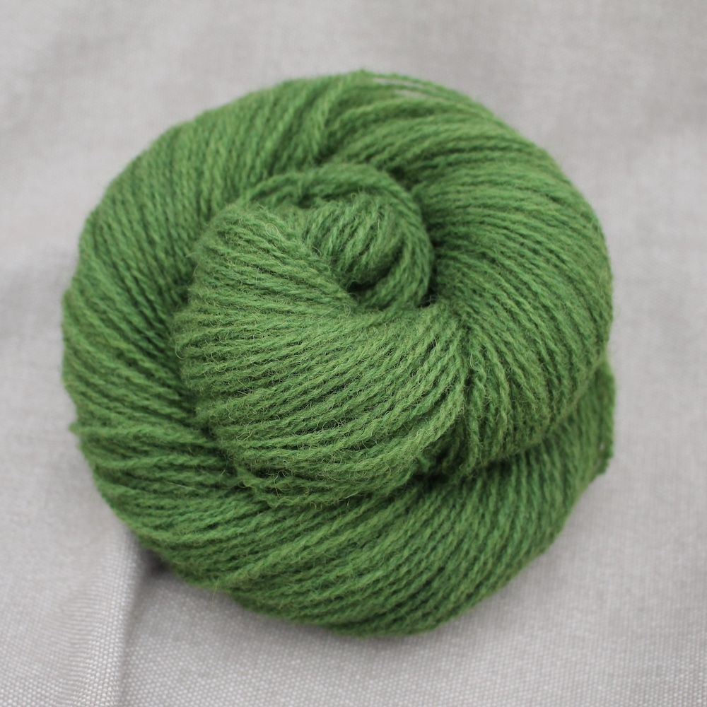 A skein of Severn 4 Ply in a rich mossy green