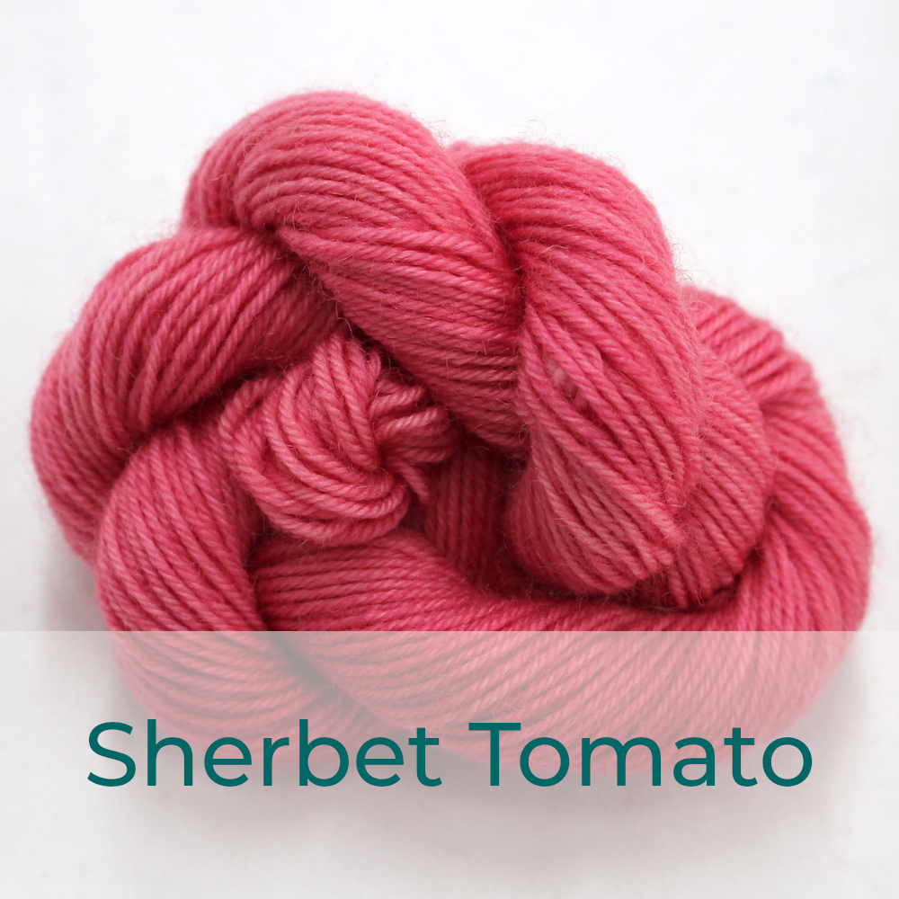 BFL 4 Ply mini skein in Sherbet Tomato colourway. It is a coral colour.