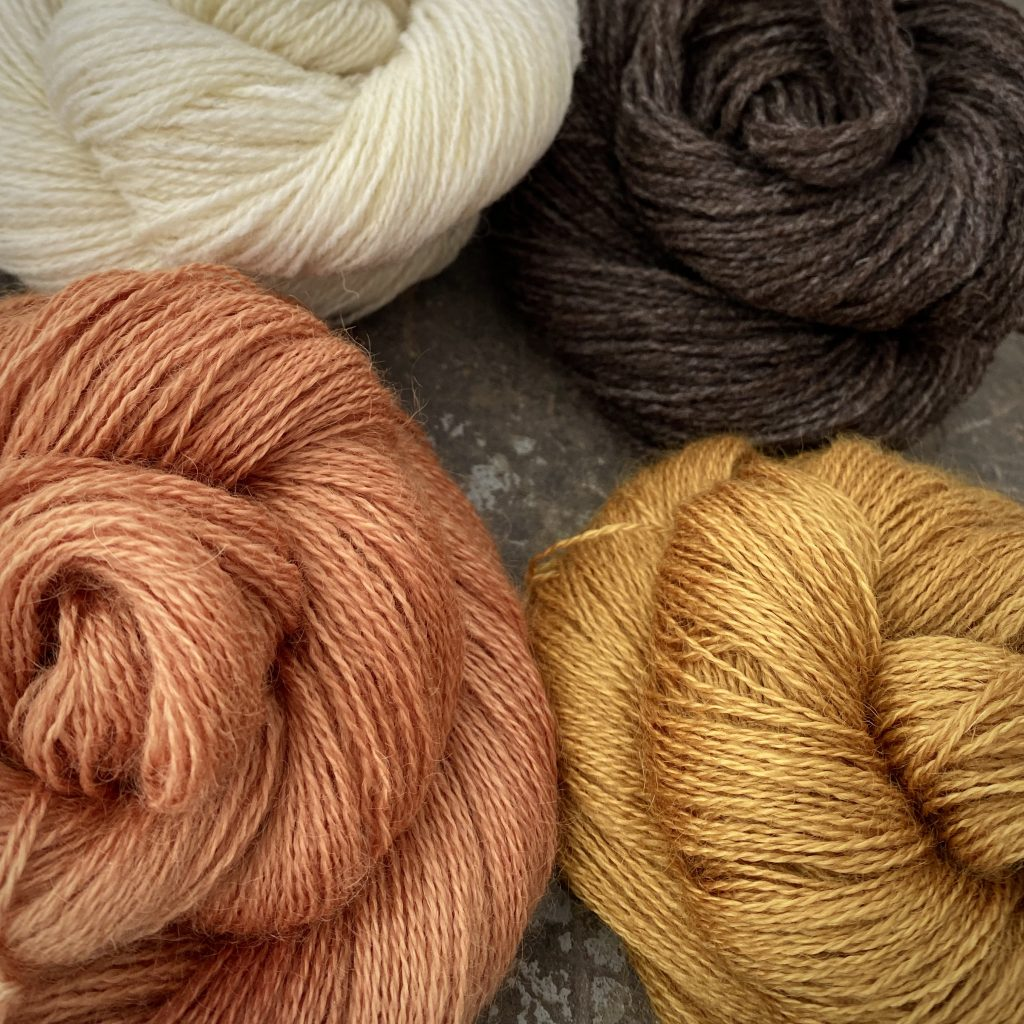 4 hanks of British wool yarns, Jacob and Wensleydale, in dyed and undyed shades.