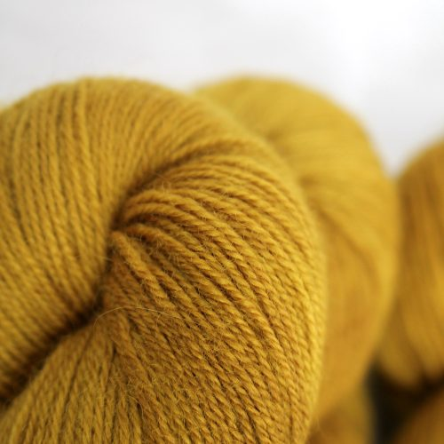 Skeins in a warm golden mustard yellow