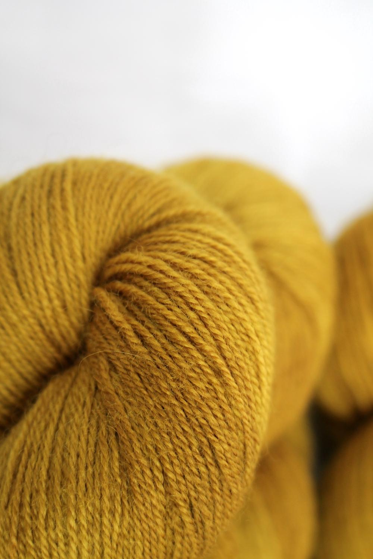 Skeins in a warm golden mustard yellow