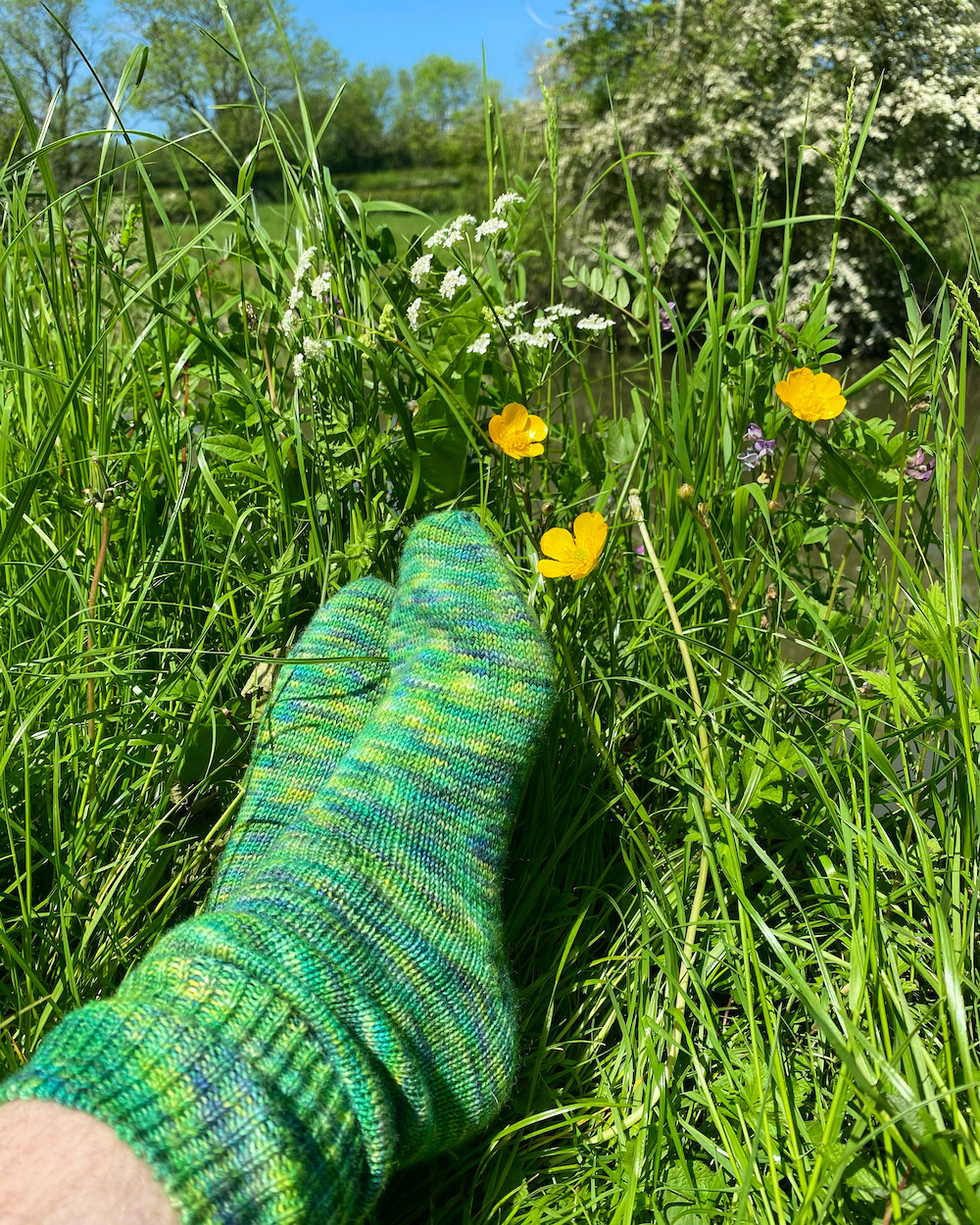 A pair of socks in the Are We There Yet colourway, nestling in some grass and wildflowers